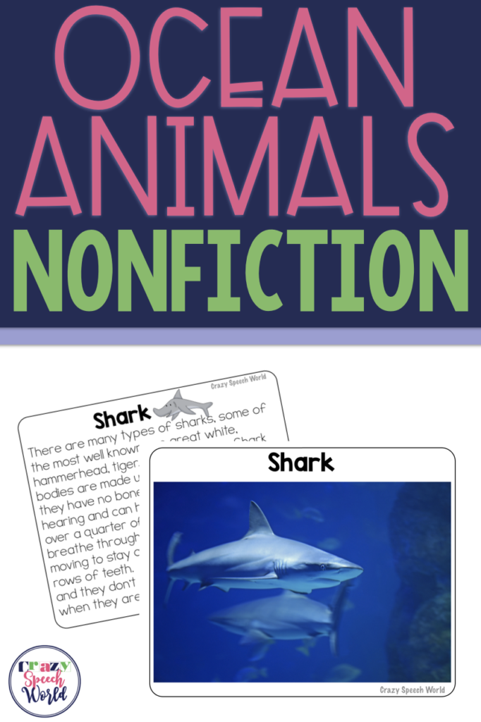 Ocean Animal Facts!