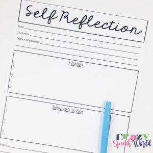 Crazy Speech World: Self Reflection